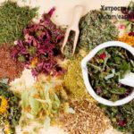 Какие Травы для здоровья Простаты Вам Нужны?